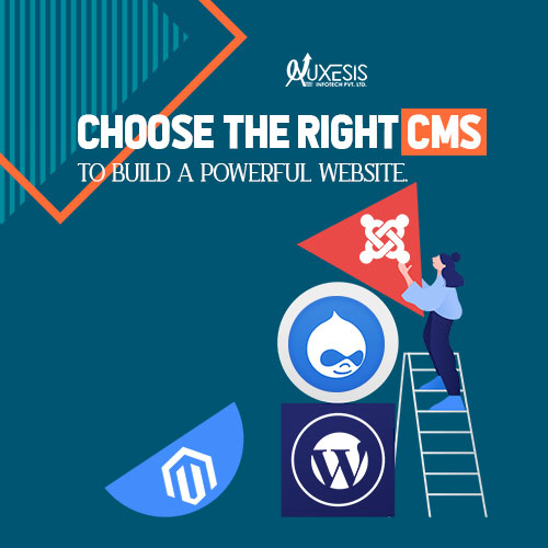Which Content Management System Is Apt For Your Business: Make A Choice!